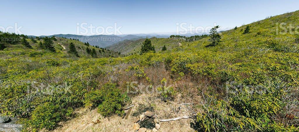 Mountain Meadow Panorama stock photo