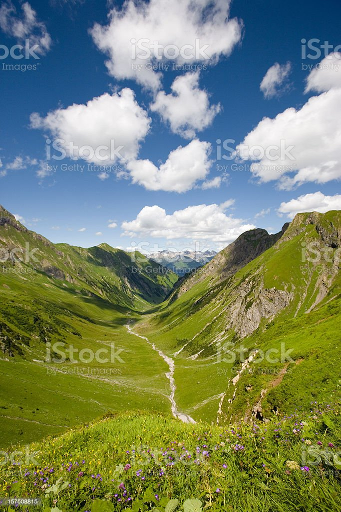 mountain meadow royalty-free stock photo