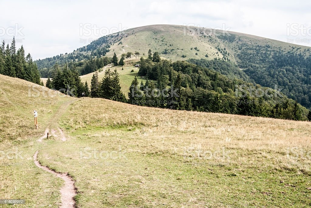 mountain meadow with pathway and Ploska hill in Velka Fatra stock photo