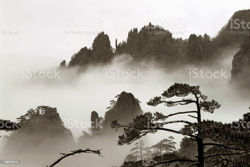 Mountain Mist royalty-free stock photo