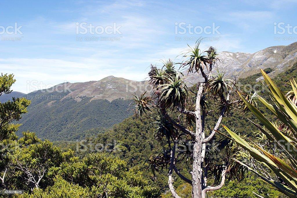 Mountain Neinei with Distant Mt Arthur, The Kahurangi National Park stock photo