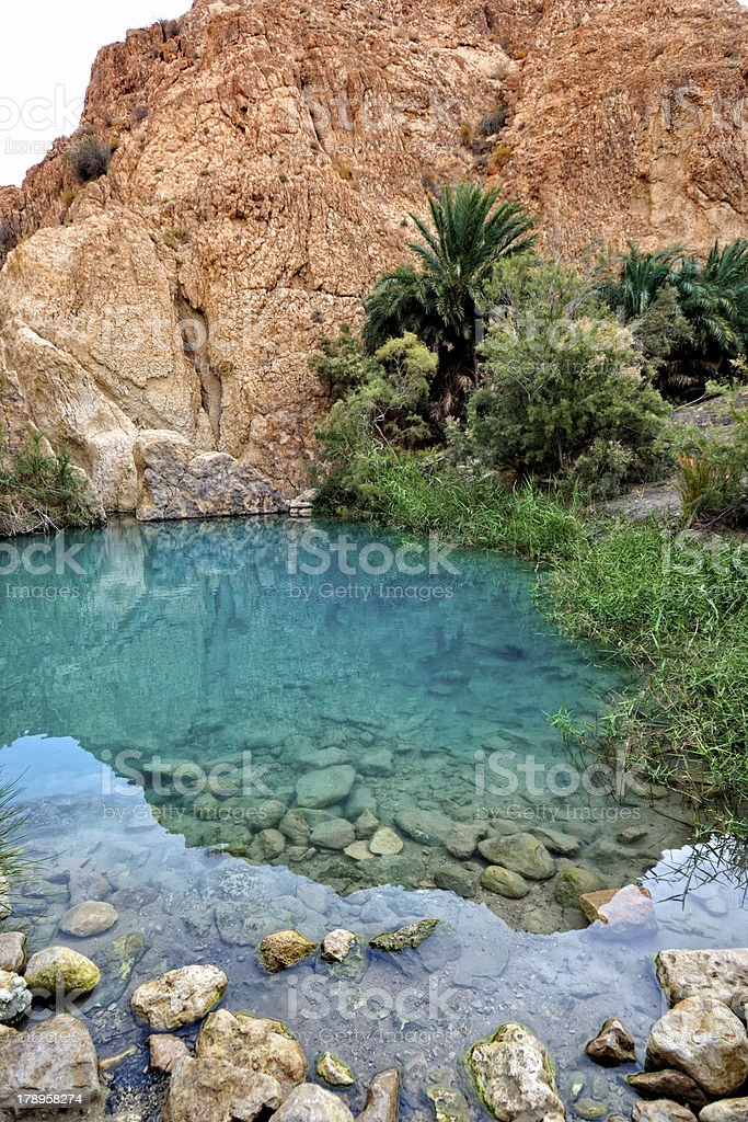 Mountain oasis Chebika stock photo