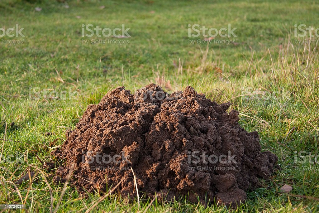 Mountain out of a mole Hill. stock photo