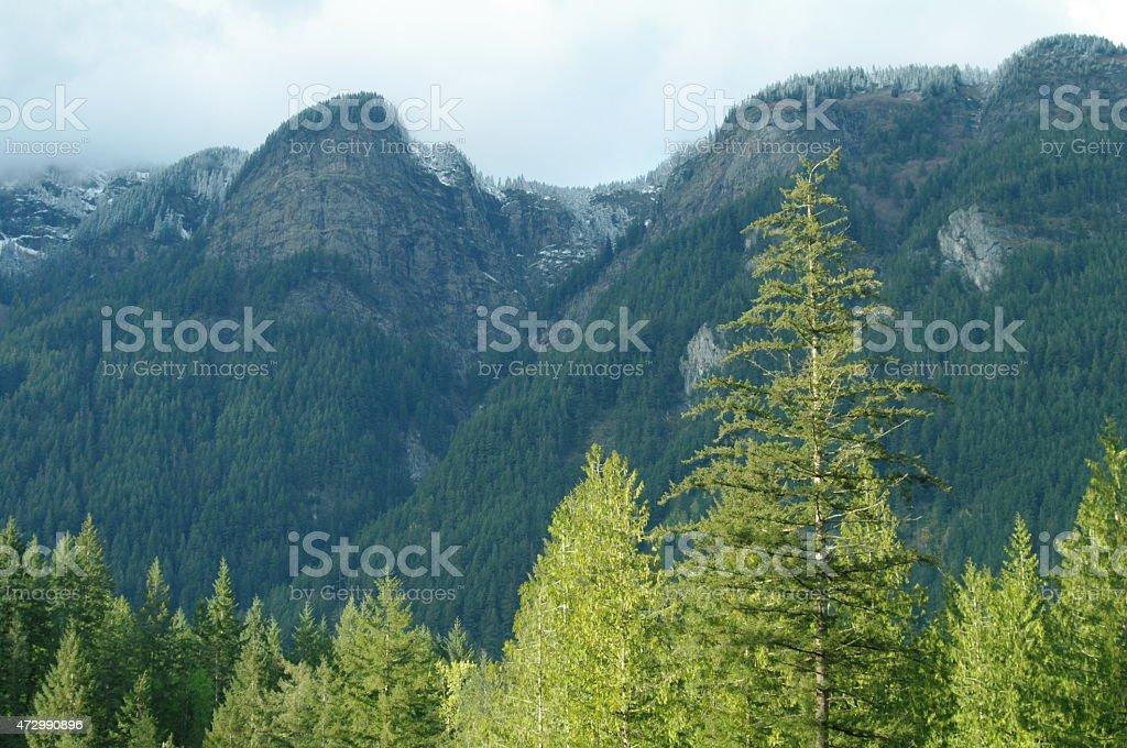 Panorama de las montañas de Canadá foto de stock libre de derechos