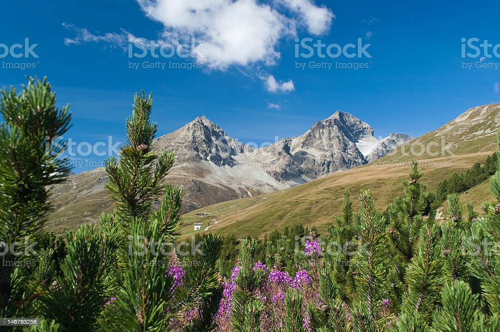 Mountain Panorama royalty-free stock photo