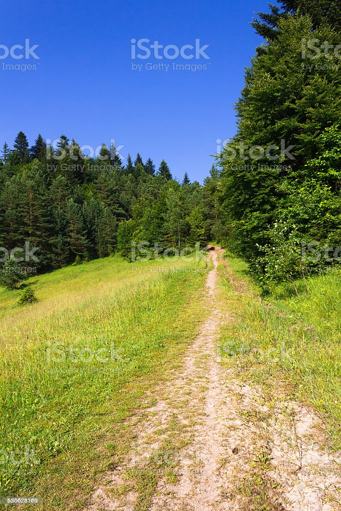 Mountain Path. Summer, Pieniny, Slovakia. stock photo