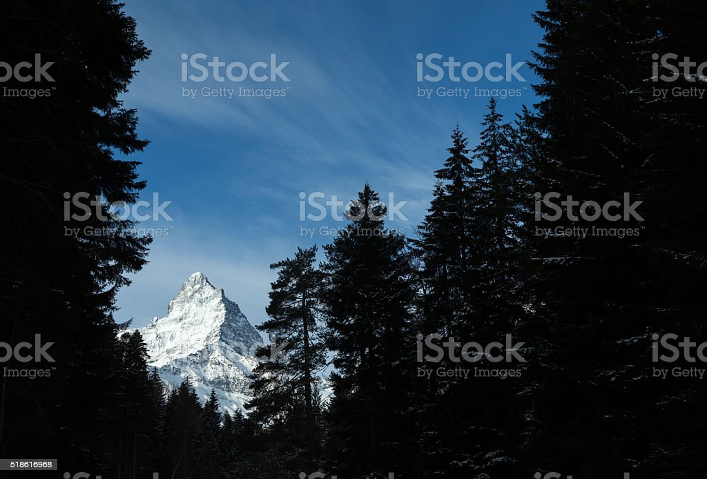 Mountain peak surrounded by a fir trees silhouettes stock photo