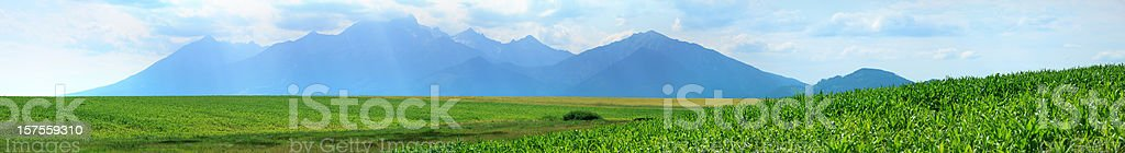 Mountain peaks and corn field royalty-free stock photo