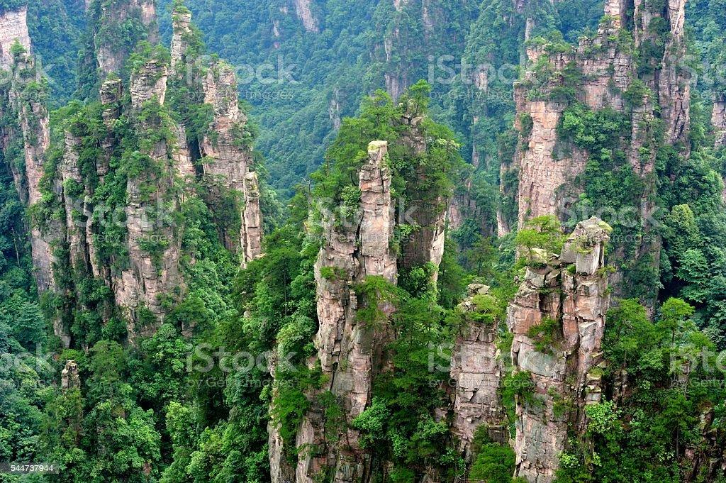 Mountain peaks forest landscape 05 stock photo