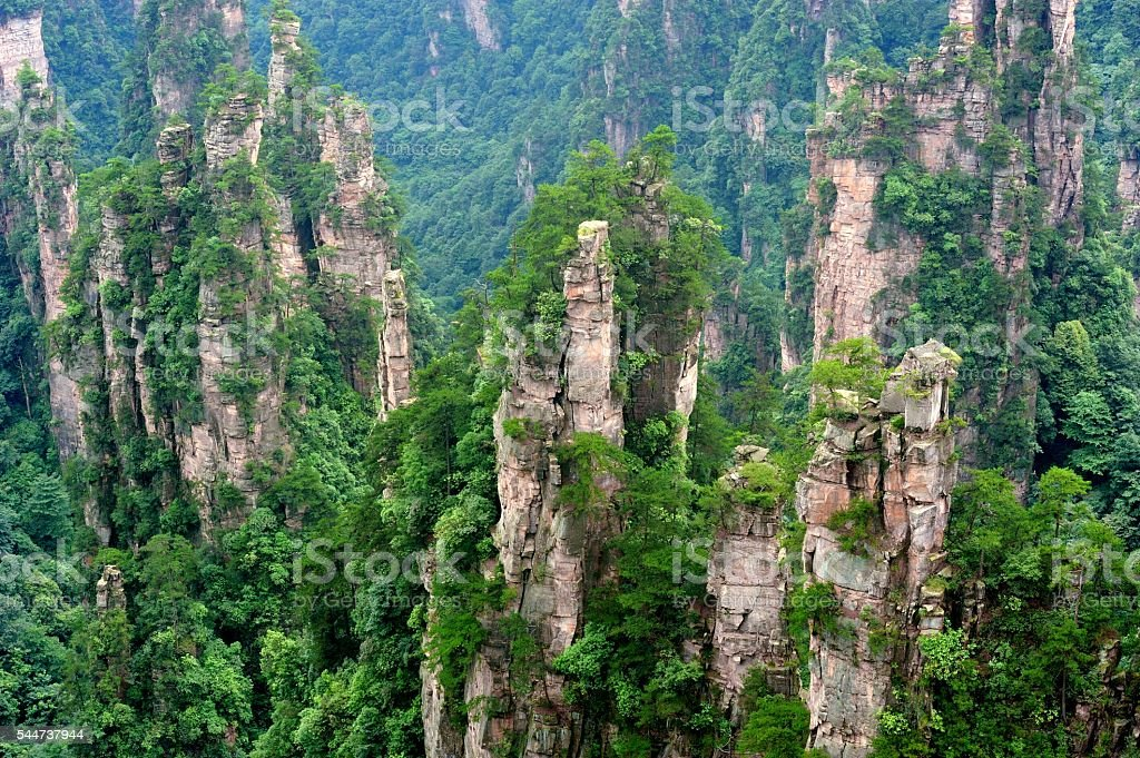 Mountain peaks forest landscape 05 stock photo
