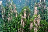Mountain peaks forest landscape 05