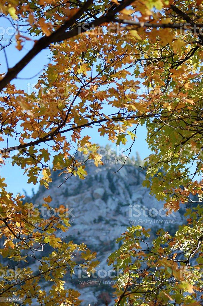 Mountain 'Peeks' through Autumn Veil royalty-free stock photo