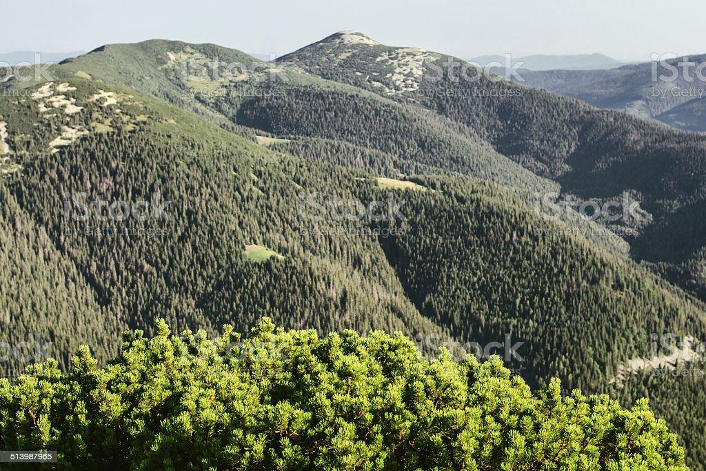 Chaîne de montagnes photo libre de droits