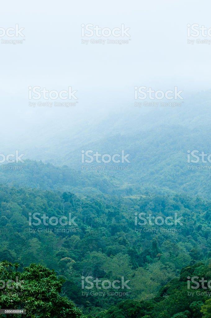 mountain range stock photo