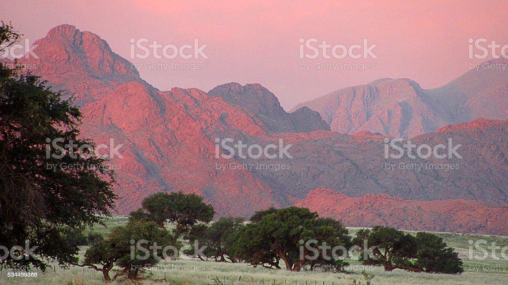 Mountain range red acacia tree rolling landscape stock photo