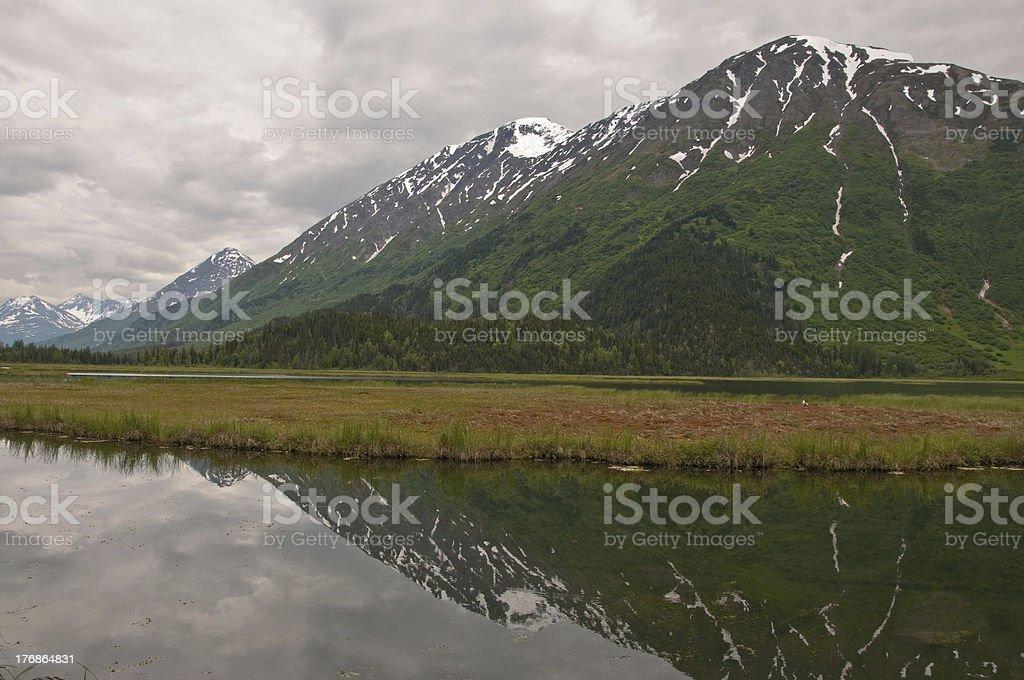 Mountain Reflection on Kenai Marsh stock photo
