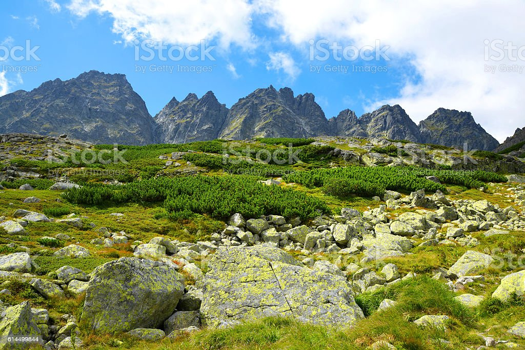Mountain ridge Bast. Slovakia stock photo