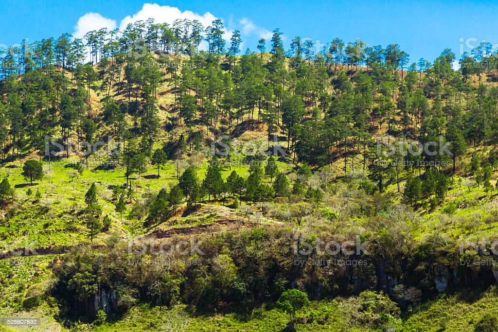 Mountain Ridge in Honduras stock photo