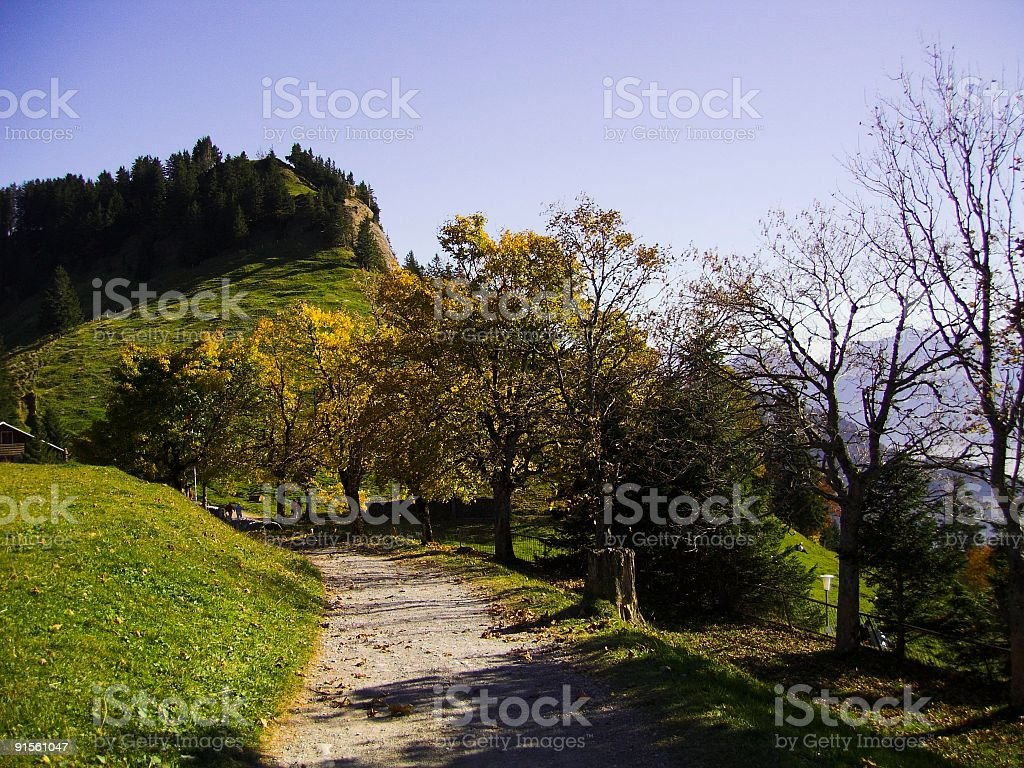 Mountain Rigi road stock photo