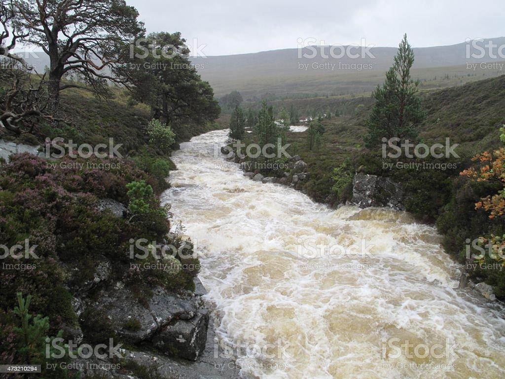 mountain river after heavy rain stock photo