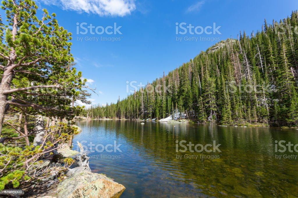 Mountain river and evergreen forest on each side stock photo