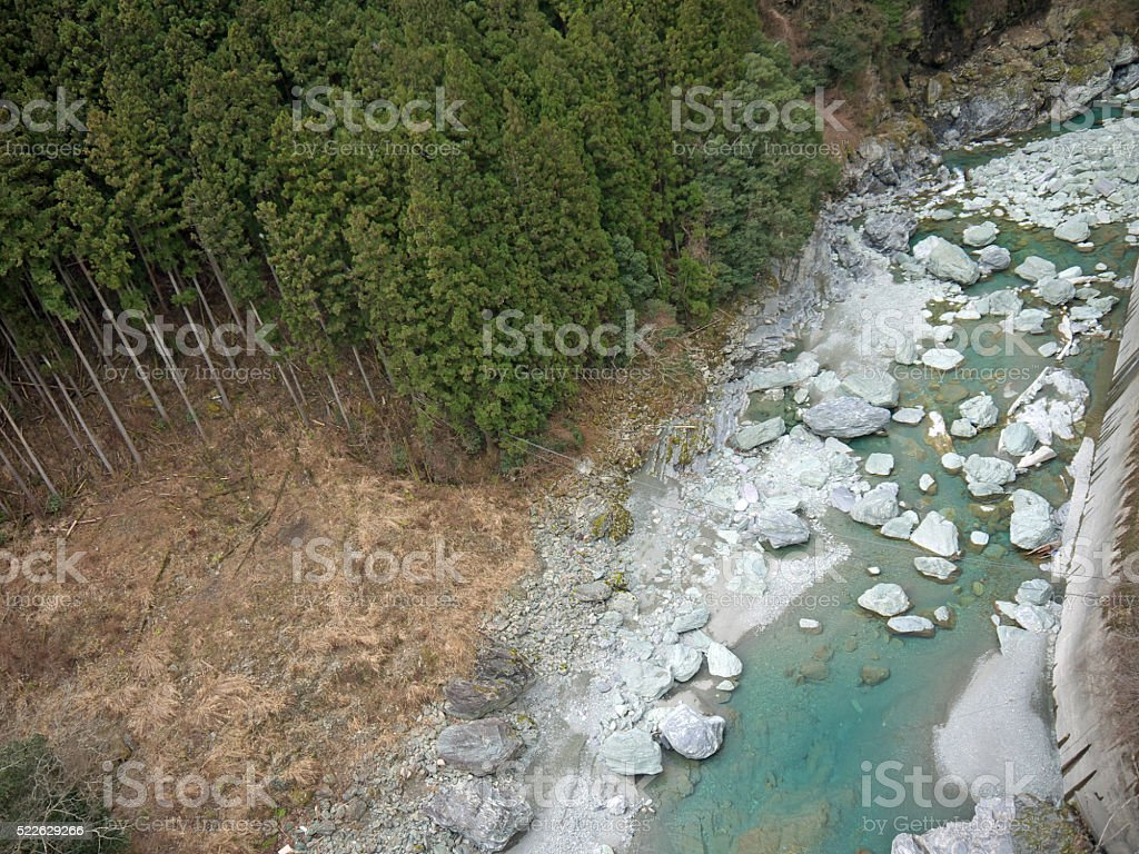 Mountain river and forest stock photo