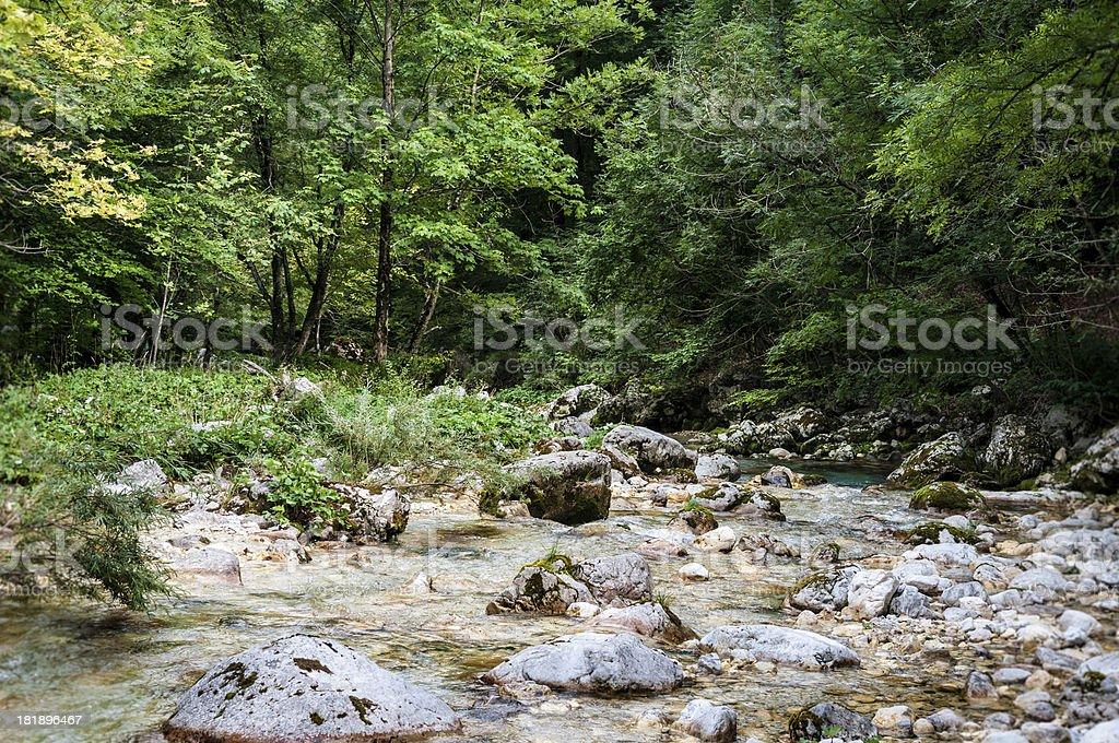 Mountain River Arzino in Friuli Venezia Giulia, Italy royalty-free stock photo