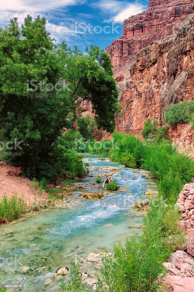 Mountain river in forest and mountain terrain. Grand Canyon, Havasupai stock photo
