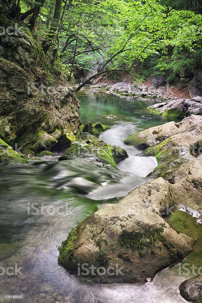 Mountain river in forest terrain. royalty-free stock photo
