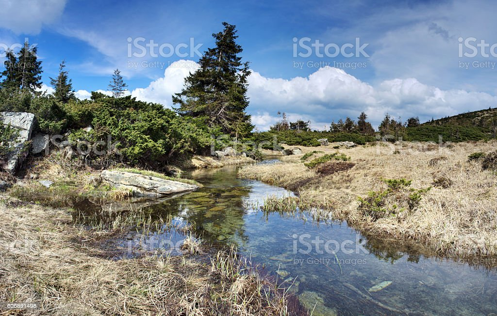 Mountain river in spring landscape stock photo