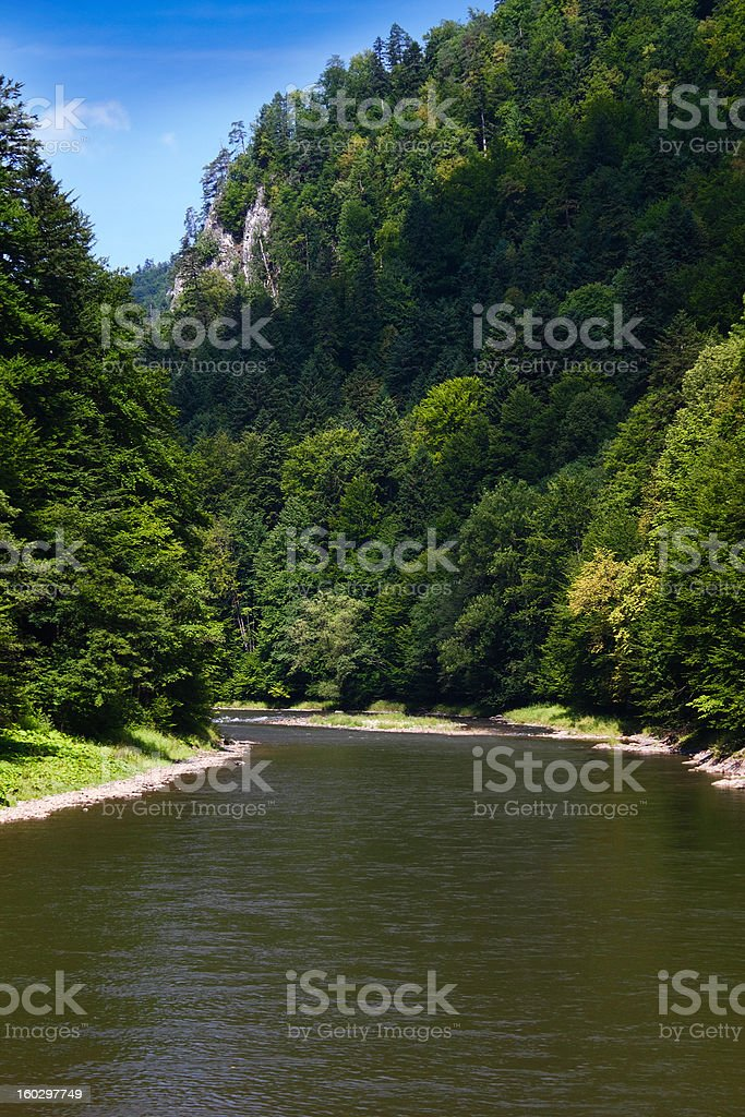 Mountain River in Summer royalty-free stock photo