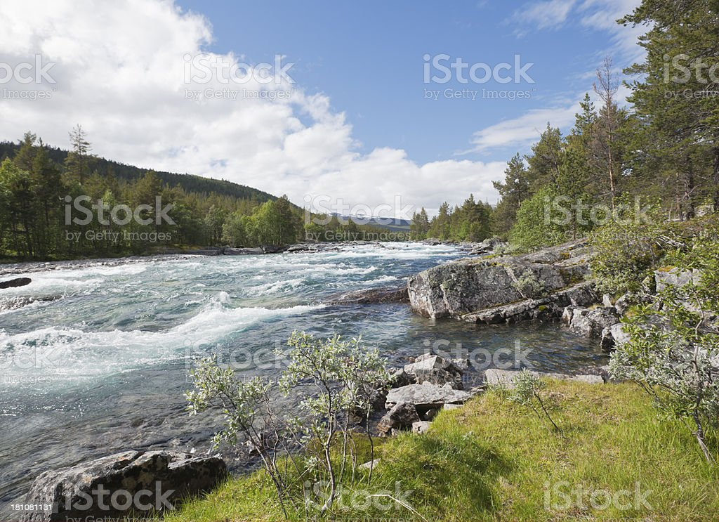 Mountain river in summer. royalty-free stock photo
