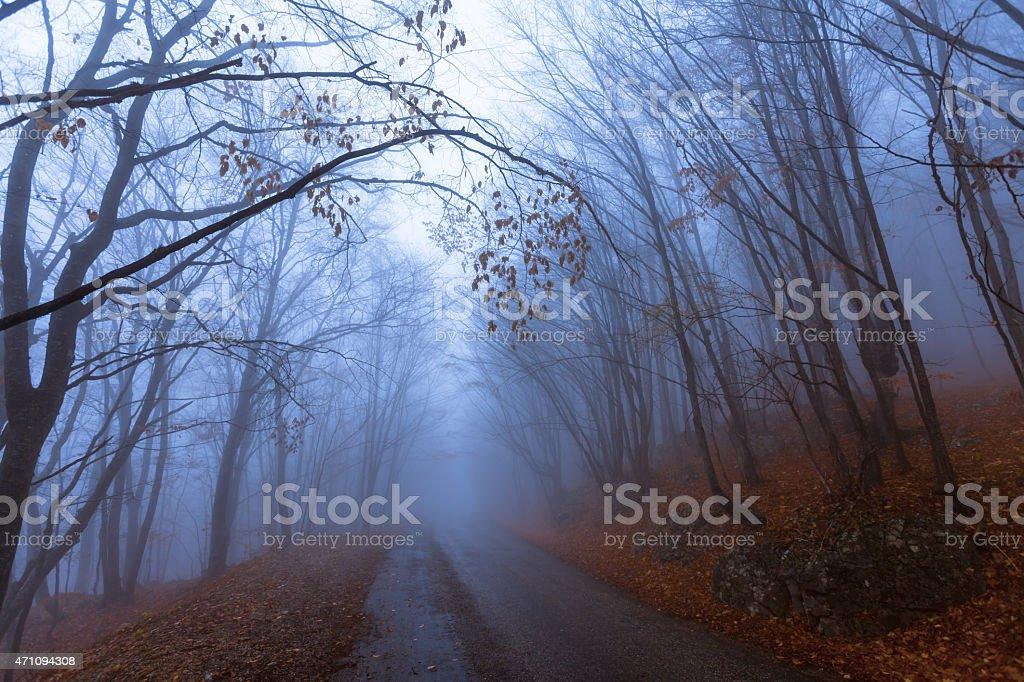 Mountain road in autumn colours stock photo