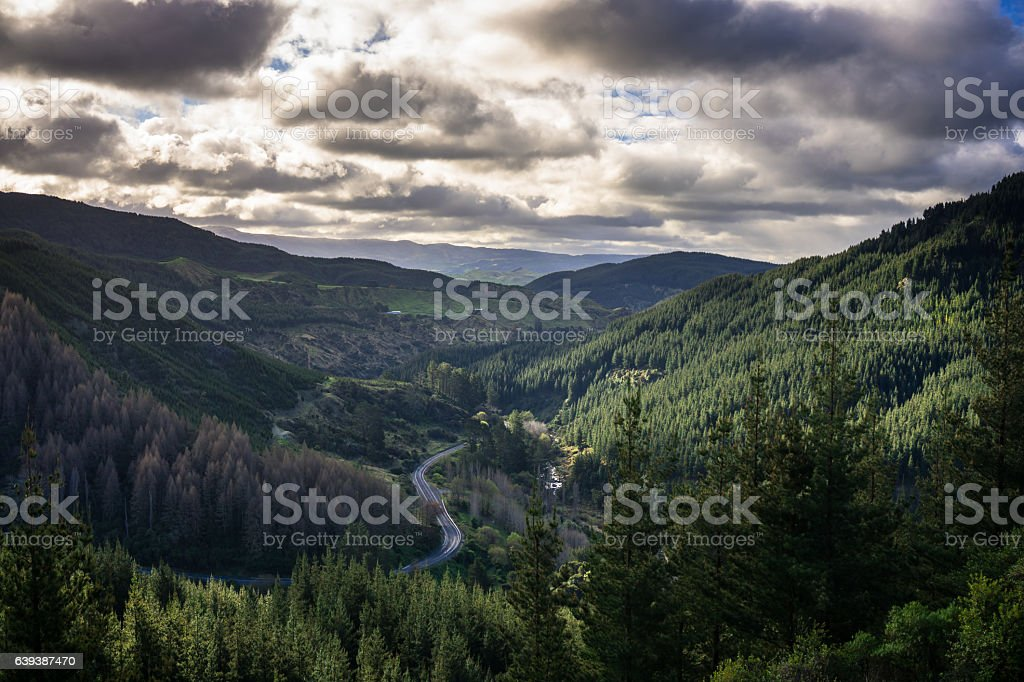 Mountain Road in Hawkes Bay stock photo