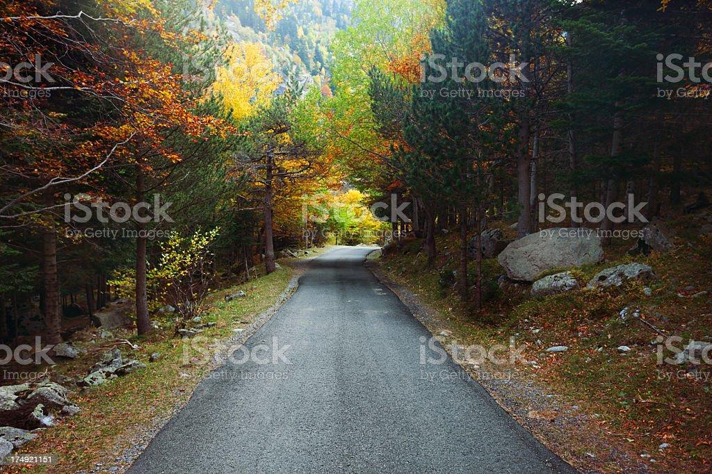 Mountain road. royalty-free stock photo