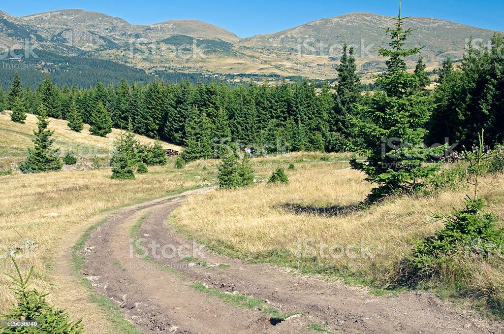 Mountain road royalty-free stock photo