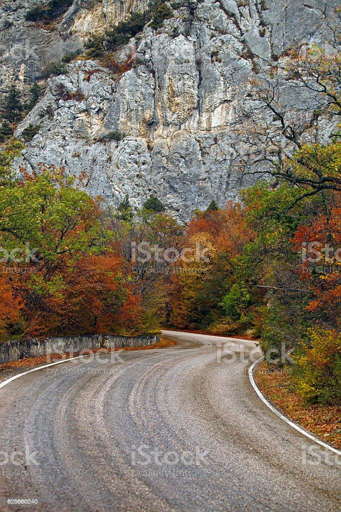 Mountain road through autumn woods stock photo