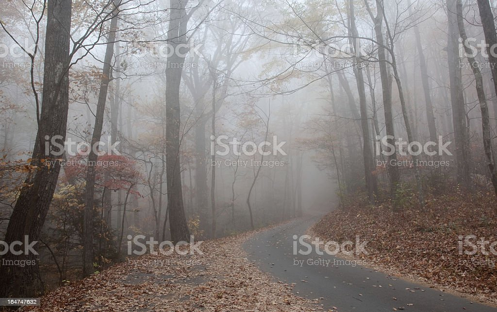 Mountain road winding up through the fall mist royalty-free stock photo