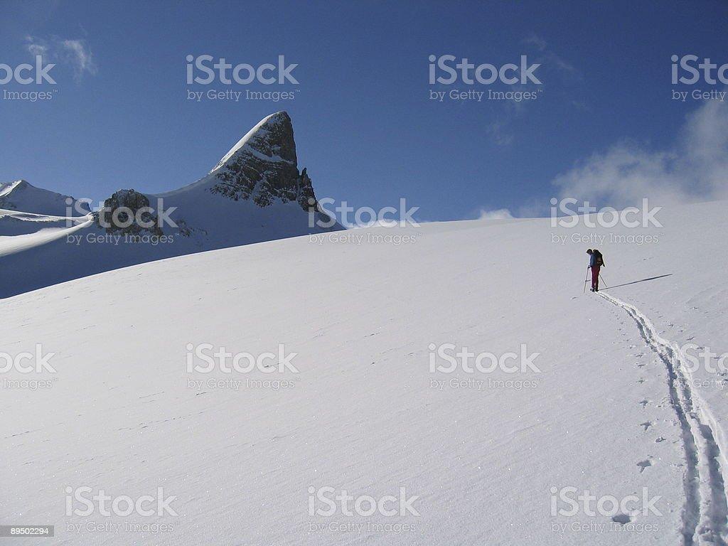 Mountain Skiing royalty-free stock photo