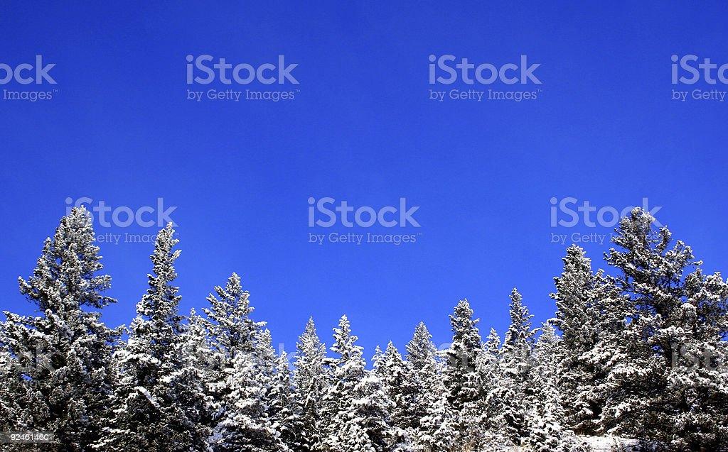 Mountain Snow royalty-free stock photo