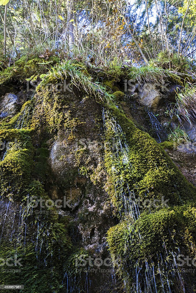 Mountain stream among the mossy stones stock photo
