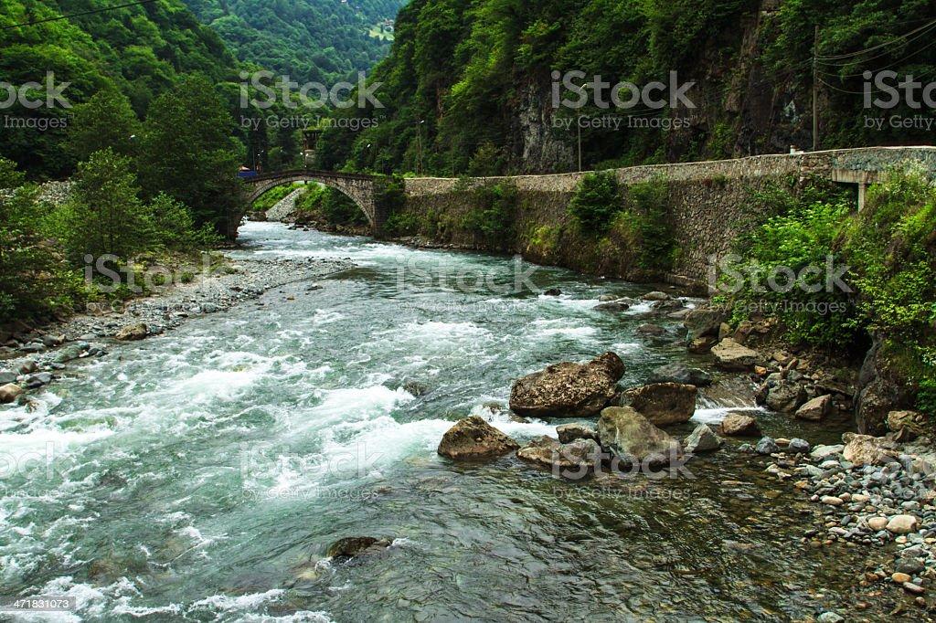 Mountain Stream and Bridge royalty-free stock photo