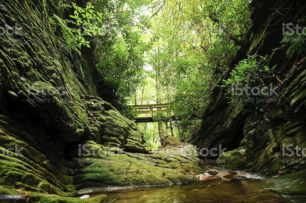 Mountain stream bridge stock photo