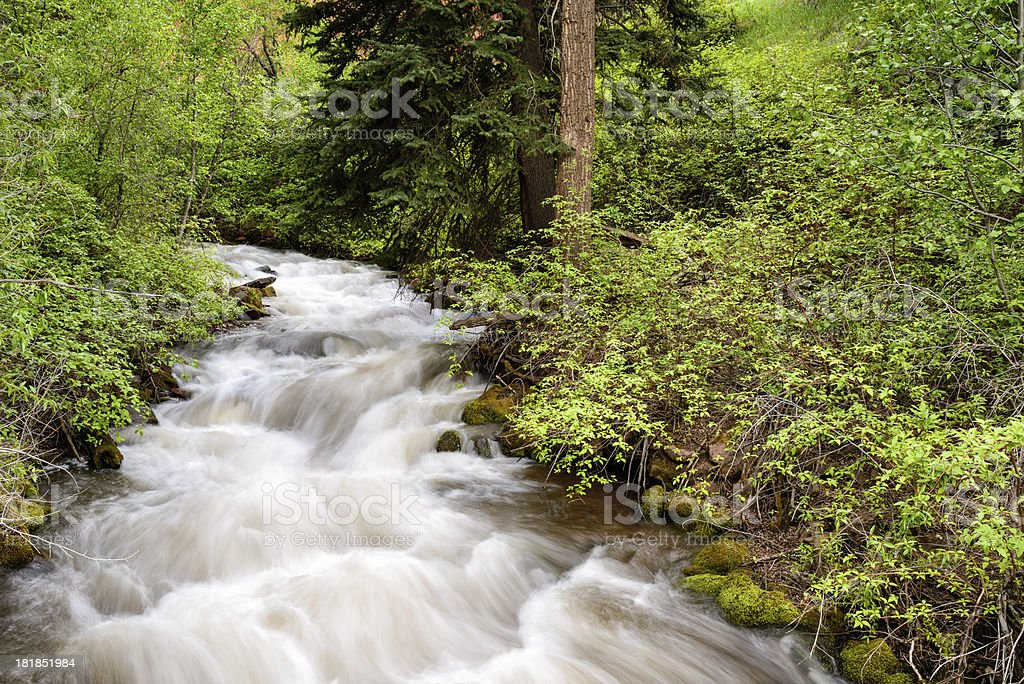 Mountain Stream Cascading in Nature royalty-free stock photo