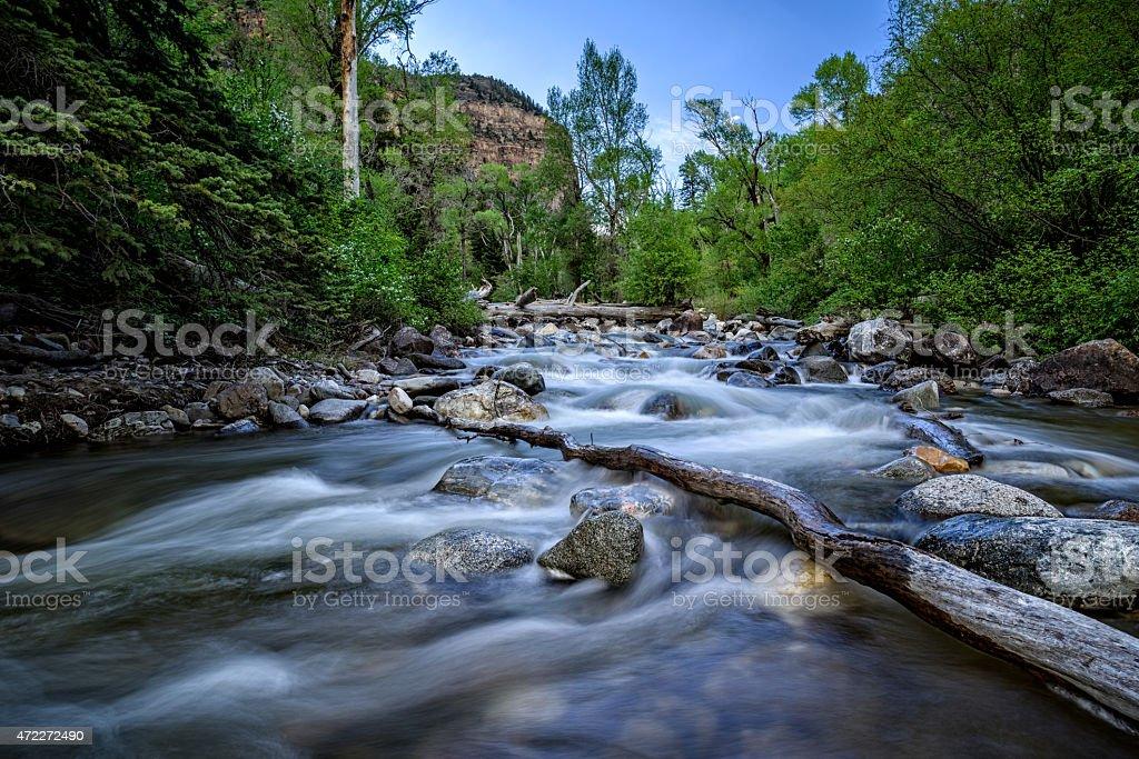 Mountain Stream Cascading through Lush Canyon stock photo