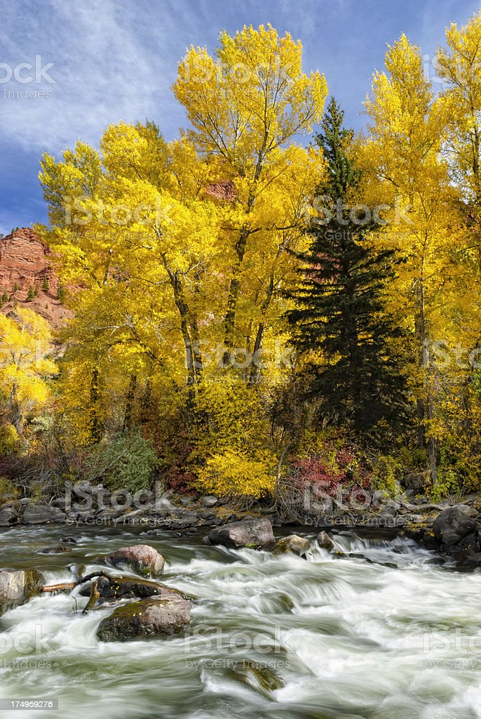 Mountain Stream Flowing through Red Rock Canyon royalty-free stock photo