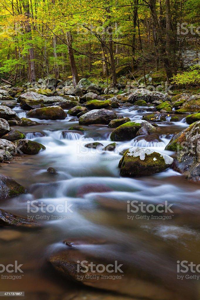 Mountain Stream in Autumn royalty-free stock photo