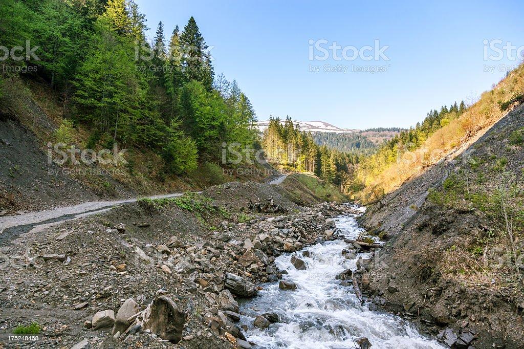 Mountain stream in Carpathians royalty-free stock photo