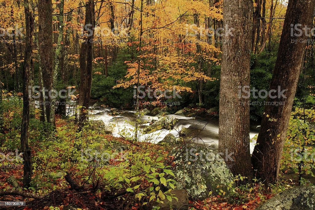 mountain stream in fall stock photo