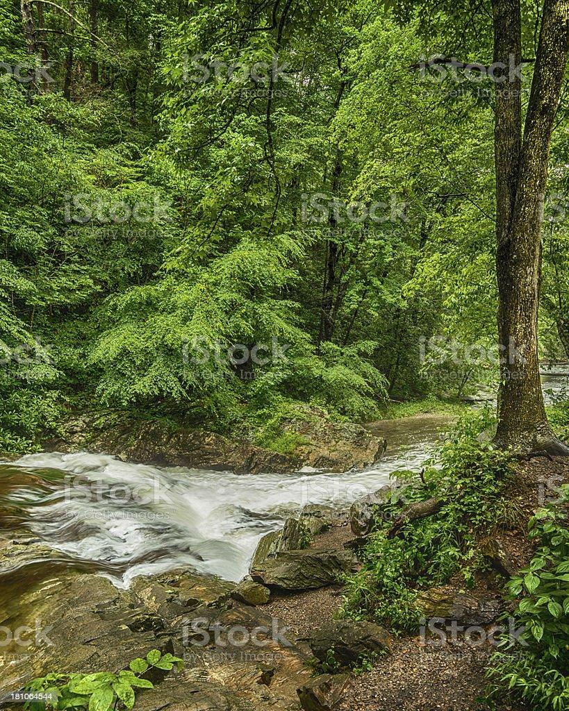 Mountain Stream In Springtime royalty-free stock photo
